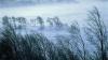 Желтый код опасности: ожидается усиление юго-западного ветра