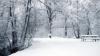 Погода на 20 января 2012
