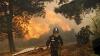 Около ста домов уничтожены огнем в центральной части Чили