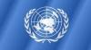 Доклад ООН: Молодежь по всему миру обеспокоена безработицей