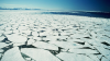 Ледоход на Дунае уничтожил сотню судов и плавучий ресторан