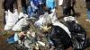 Мэрия начала генеральную уборку Кишинева (ВИДЕО)
