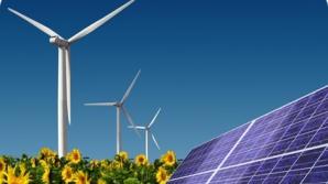 Правительству предложат методологию расчета затрат на проекты по возобновляемым источникам энергии