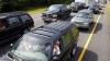 В США пересекавшие шоссе гуси создали гигантскую пробку