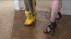 В Техасе предлагают услуги по уборке квартир обнаженными девушками
