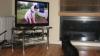 В США появился первый телеканал для собак