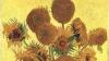 Ученые: Подсолнухи с картины Ван Гога имеют генные мутации