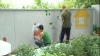 Из тюрьмы в детсад! Пятеро заключенных криковской тюрьмы разрисовали забор дошкольного учреждения