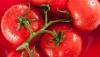 Узнайте расценки на томаты и информацию о том, когда стоимость снизится