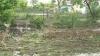 Фермерские хозяйства страны несут потери из-за разразившейся непогоды, затоплены дома