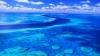 Крупнейшую сеть морских заповедников создают в Австралии