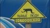 Самые нелепые дорожные знаки и указатели (ФОТО)