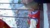В Китае ребенок повис на 4 этаже, застряв головой между решетками цветочной подставки