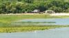 Спасаясь от зноя, кишиневцы отправились на озера и бассейны