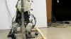 Создан робот, воспроизводящий ходьбу человека (ВИДЕО)