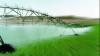 Минсельхоз обещает увеличить площади орошаемых земель