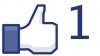 В Вашингтоне на выборах президента можно проголосовать в Facebook