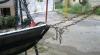 Кишинев – европейская столица: Качели прикованы цепями к дереву