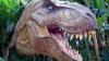 Обнаружен новый вид динозавра
