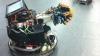 Ученые построили усатого робота (ВИДЕО)