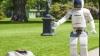 Honda впервые выпустила робота для домашнего пользования
