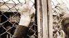 Заключенный криковской тюрьмы, пытавший сбежать, получил выстрел в ногу