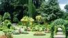 В парке голландского города Кёкенхофа произрастает более семи миллионов цветов