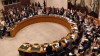 Совбез ООН утвердил резолюцию по оказанию помощи вооруженным силам Мали
