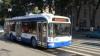 Глава УЭТ: Уж лучше шпроты в троллейбусе, чем кефаль в маршрутке