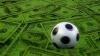 Правительство внесло в Уголовный кодекс наказания за договорные матчи
