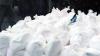 В Венесуэле конфисковано полторы тонны кокаина