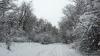 По данным СЧС, по-прежнему занесены снегом сельские дороги в 11 районах страны