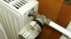 Вырастут компенсации для столичных потребителей с автономным отоплением
