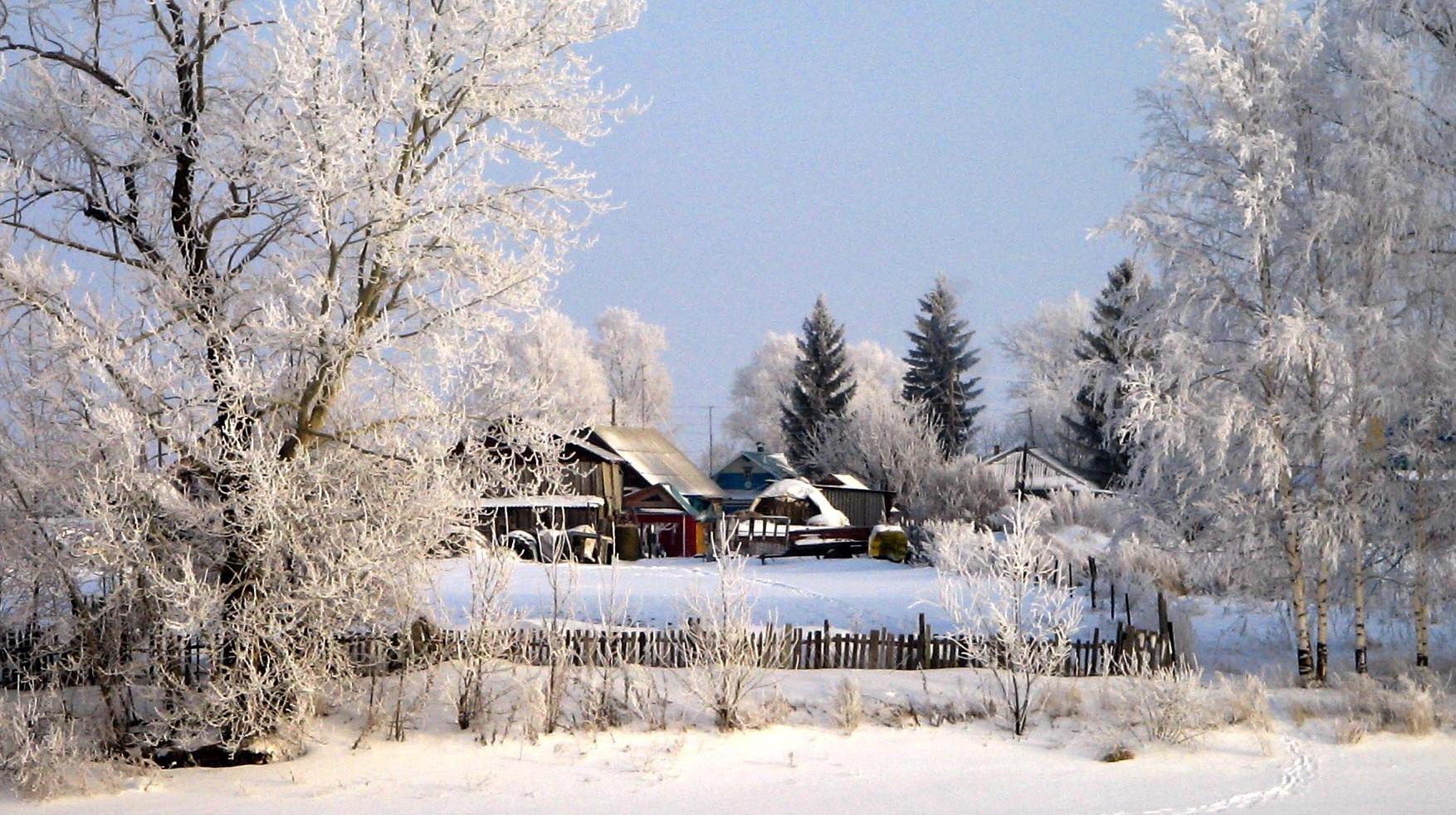 точнее картинки зима декабрь январь спинка, экокожа чёрная