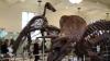 В Саудовской Аравии динозавры признаны аморальными