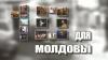 """""""10 для Молдовы"""": участников все больше"""