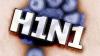 Женщина из Флорештского района умерла от вируса гриппа AH1N1