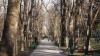 Последний день зимы в Кишиневе! (ФОТОРЕПОРТАЖ)