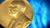 Рекордное число кандидатов претендует на Нобелевскую премию мира 2013