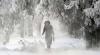 Обильные снегопады, сопровождаемые ветром, вызвали хаос в Сибири