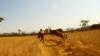 В соревнованиях по маунтинбайку в ЮАР велогонщика сбила антилопа