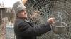 Изобретатель из села Попяска сконструировал солнечную печь, ветряные установки, систему капельного орошения