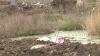 В центре города Сынжерей, неподалеку от мэрии, находится стихийная мусорная свалка