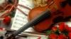 """В центре """"Орфей"""" для детей с ограниченными возможностями проводят уроки музыкотерапии"""