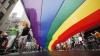 Французский парламент проголосовал за легализацию однополых браков
