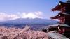 Японскую гору Фудзи включат в Мировое наследие ЮНЕСКО