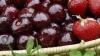 Продаваемые на рынках отечественные овощи и фрукты не проходят проверку на содержание пестицидов