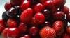 Изобилие фруктов и ягод привело к снижению цен