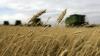 Эксперты: Нужен закон, который заставит фермеров страховать свои угодья