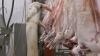 Всеобщая вакцинация в Вадянах после случая заражения сибирской язвой